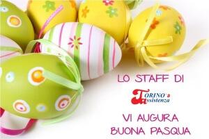 AUGURI DI PASQUA Torino 3 Assistenza