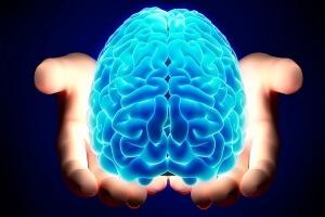 rigenerare cervello